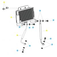 BENELLI BN 125 // (CHASIS) T022 CIRCUITO REFRIGERADOR